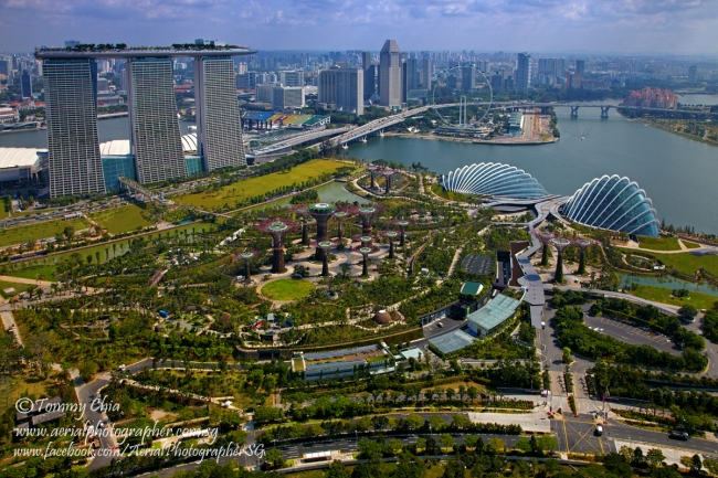 Aerial view of Gardens by the Bay at Marina South, with the Marina Bay Sands and Singapore Flyer in the background. The Super Tress in the garden was build by TTJ Design & Engineering Pte Ltd. Photo by Tommy Chia, STUDIO 8, Photography, Singapore.
