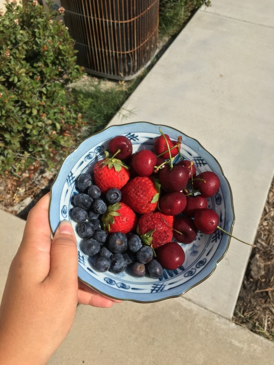 Nothing better than a good old summer bowl of cherries, strawberries and blueberries