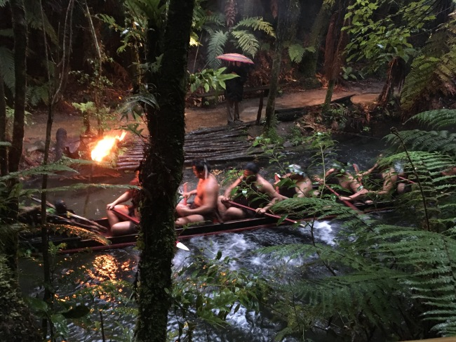 We were able to visit a Maori Village where they put on a water show for us