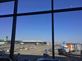 Tokyo Narita airport, on the way back to my favorite little island!