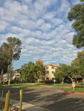 I can't believe I get to live here!// Occidental College