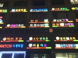 Found this really cool building (loved all the colors of the signs) while walking around Myeongdong at night.
