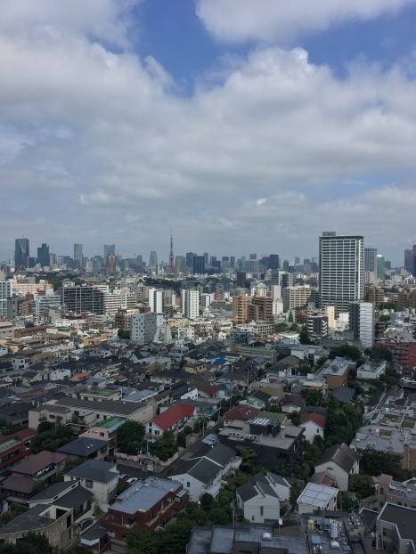 View of the city from the Westin Hotel in Ebisu
