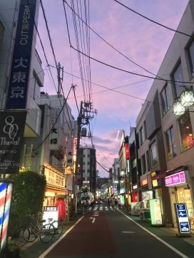 Nightlife in the neighborhoods of Tokyo// Naka-Meguro, Tokyo