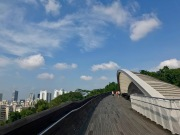 Morning hikes on a clear and (semi) cloudless day // Henderson Waves, Sentosa