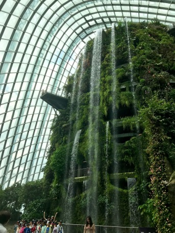 The world's tallest indoor waterfall // Cloud Forest, Gardens by the Bay